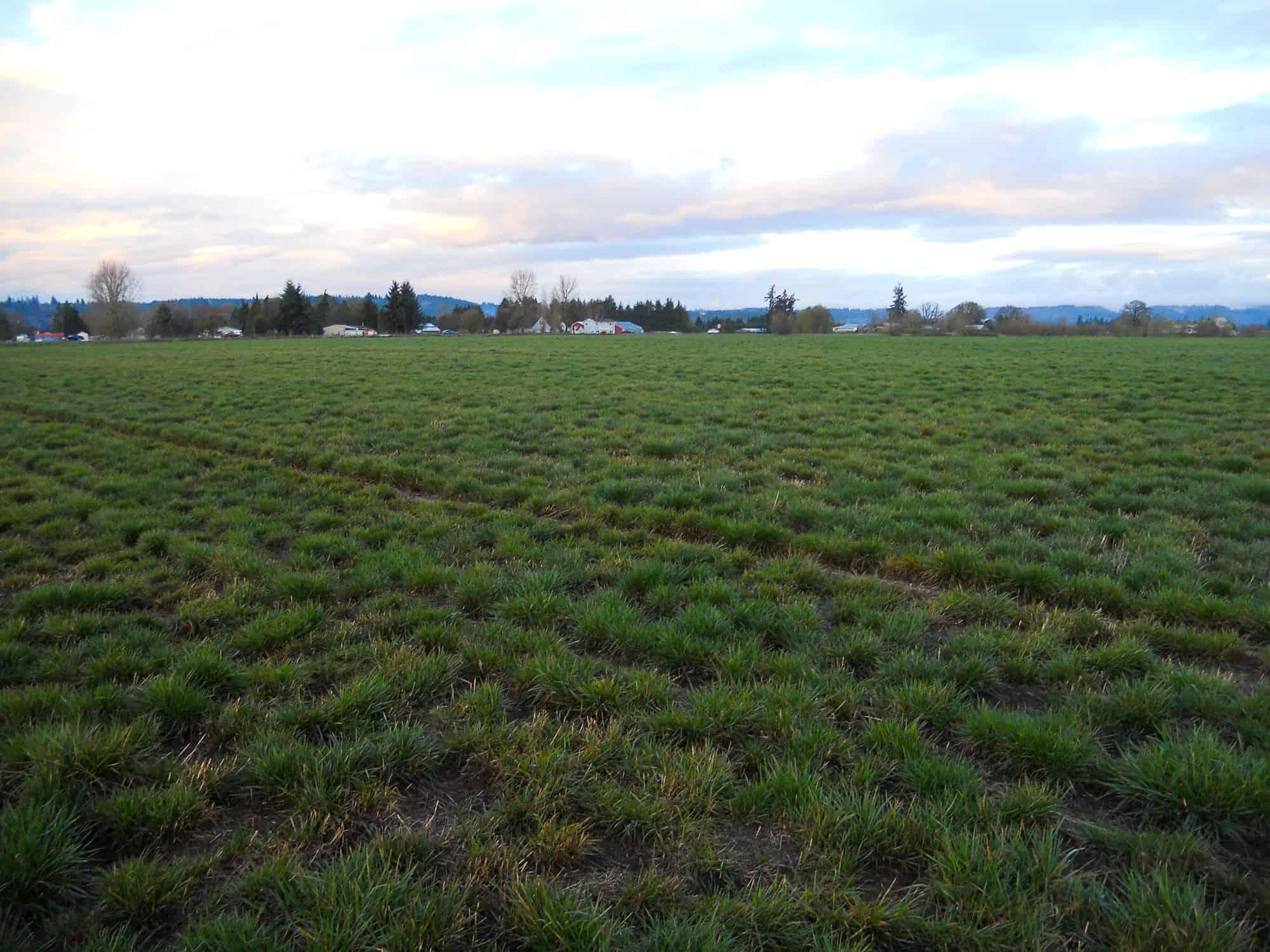 Crabtree Farm Property Oregon Farm Property For Sale