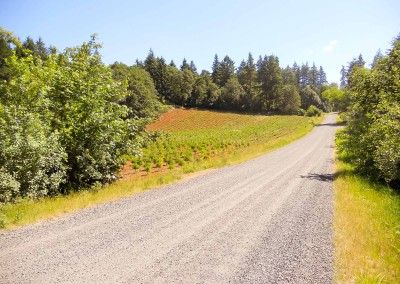 Farm and Ranch properties in Oregon-2