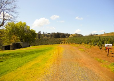 Farm and Ranch properties in Oregon-9
