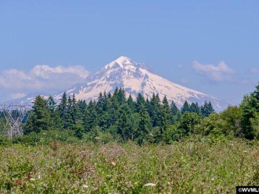 34500 Highway 211, Boring, Oregon 97009
