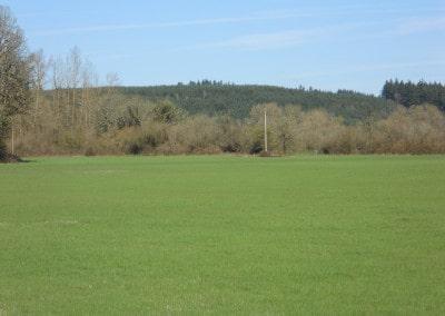 Scio Farm land for Sale-10
