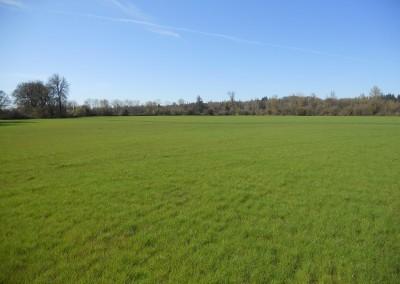 Scio Farm land for Sale-11