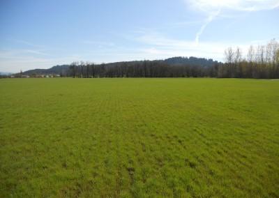 Scio Farm land for Sale-12
