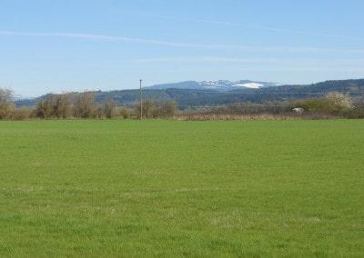 Scio Farm land for Sale-13