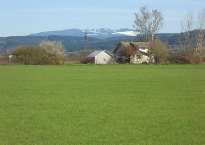 Scio Farm land for Sale-14