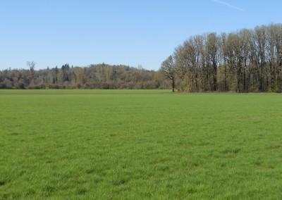 Scio Farm land for Sale-15