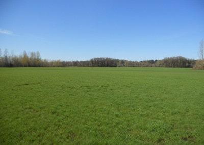 Scio Farm land for Sale-2