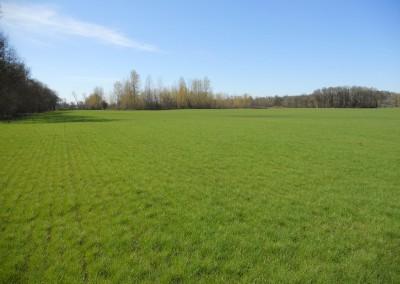 Scio Farm land for Sale-3