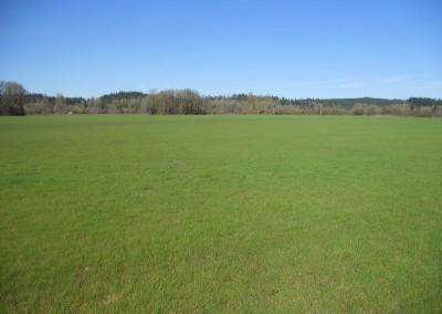Scio Farm land for Sale-4