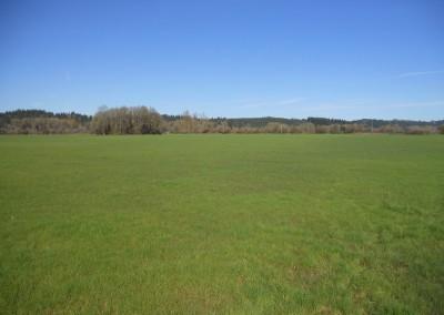 Scio Farm land for Sale-5