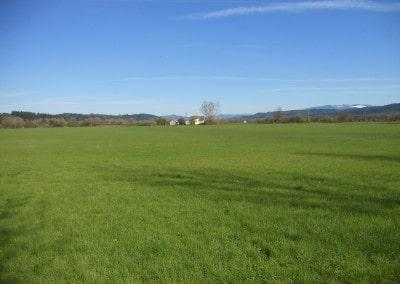 Scio Farm land for Sale-8