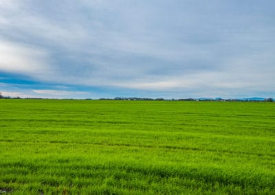 tangent-farm-for-sale-in-oregon