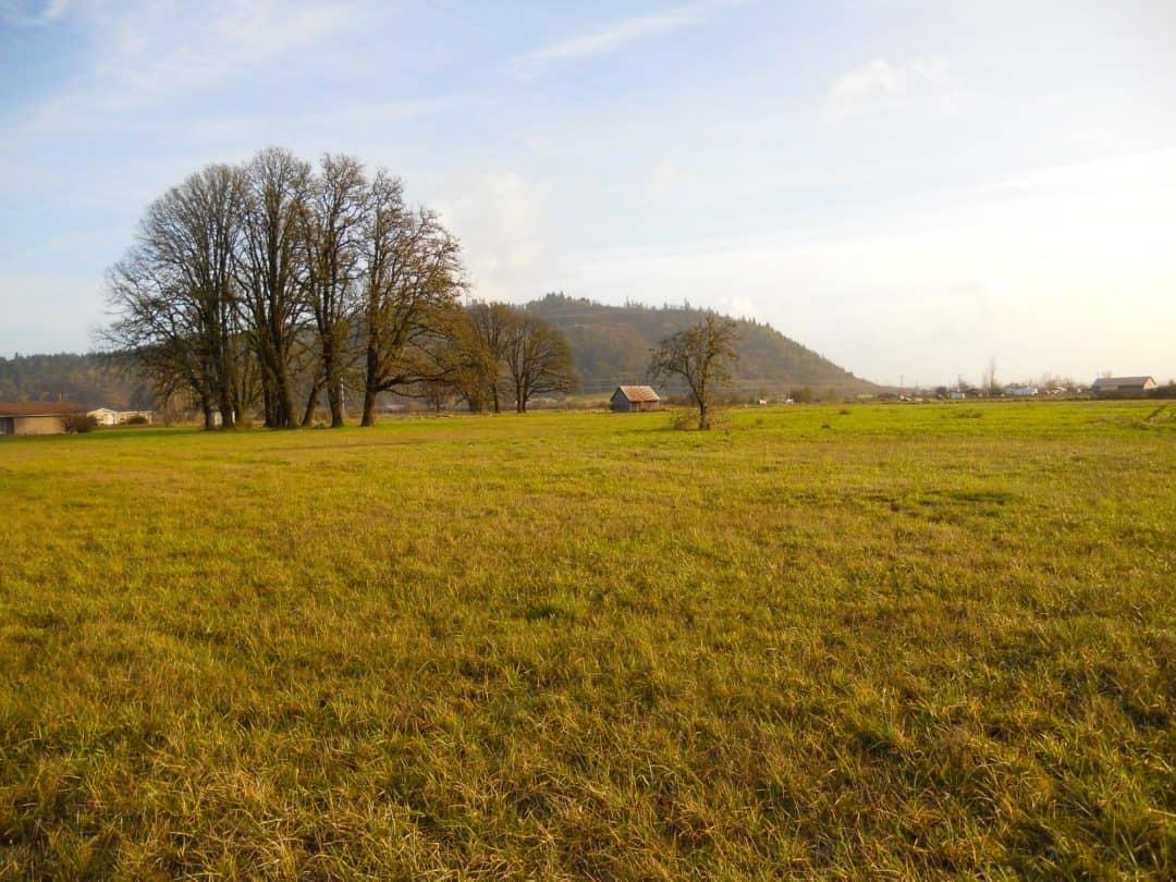 Richardson Gap Farm | Willamette Valley Farmland
